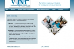 Violence Research Foundation
