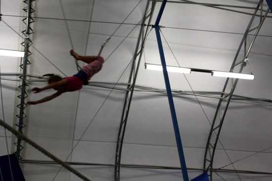 Summer Journal: Trapeze Lesson